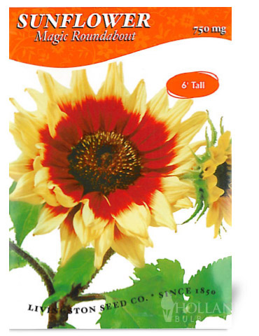 Magic Roundabout Sunflower Seeds