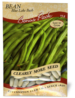 Bush Green Bean - Blue Lake