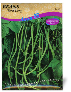 Pole Bean Yard Long