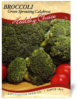 Green Sprouting Calabrese Broccoli