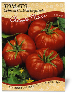 Tomato Crimson Cushion/Beefsteak