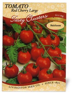 Tomato Red Cherry Large