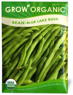 Organic Bush Bean Seeds Blue Lake